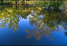 Toronto's Iconic High Park: Grenadier Pond No. 13