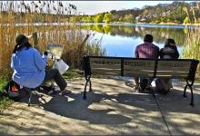 Toronto's Iconic High Park: Grenadier Pond No. 19
