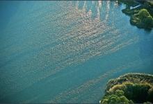 Toronto's Iconic High Park: Grenadier Pond No. 23