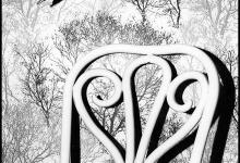 Chair meets wallpaper